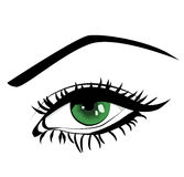 Beautiful female green eye Stock Photos