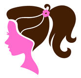 Beautiful female hairstyle Stock Images