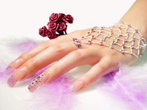 Beautiful female hand Royalty Free Stock Photo