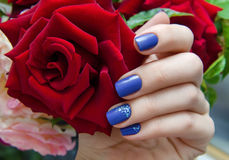 Beautiful female hand with purple nail design. Beautiful female hand with purple nail design and red rose Royalty Free Stock Photos