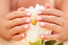 Beautiful female hands Royalty Free Stock Photography