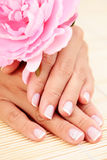 Beautiful female hands Royalty Free Stock Image