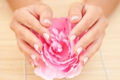 Beautiful female hands Royalty Free Stock Image