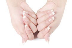 Beautiful female hands Stock Images