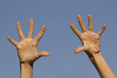 Beautiful female hands Royalty Free Stock Photos