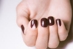 Beautiful female hands with bright manicure. Nails covered with nail Royalty Free Stock Photography