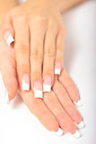Beautiful female hands with french manicure Royalty Free Stock Image