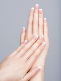 Beautiful female hands with french manicure Royalty Free Stock Photography