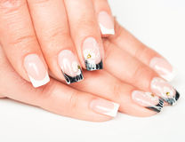 Beautiful female hands with manicure Royalty Free Stock Photography