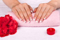 Beautiful female hands with perfect french manicure Royalty Free Stock Images