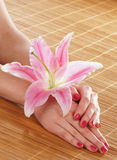 Beautiful female hands with polished nails and a flower Stock Image
