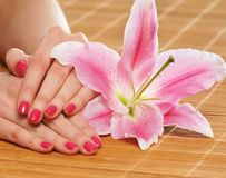 Beautiful female hands with polished nails and a flower Royalty Free Stock Photo