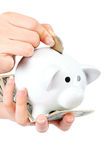 Beautiful female hands putting coin into piggy bank. Stock Photography