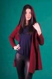 Beautiful female knitwear Stock Photography