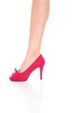 Beautiful female legs Stock Images