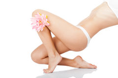 Beautiful female legs Royalty Free Stock Photo