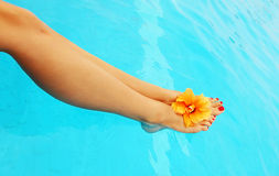 Beautiful female legs in the pool Stock Photos