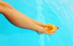 Beautiful female legs in the pool Stock Photos