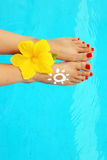 Beautiful female legs in the pool Royalty Free Stock Images
