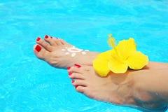 Beautiful female legs in the pool Stock Image