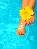 Beautiful female legs in the pool Stock Photography