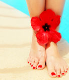 Beautiful female legs on the pool Stock Photography