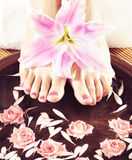 Beautiful female legs in spa composition. Legs, flowers, petals and ceramic bowl. Spa, recreation and skin care concept Stock Photos
