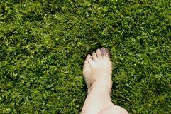 Beautiful female legs standing barefoot on green grass, concept of ecology Stock Photos