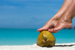 Beautiful female legs in the tropical beach conceptual image of Stock Photo
