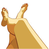 Beautiful female legs. Vector illustration in layers. Isolated image Stock Image