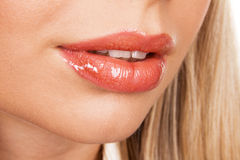 Beautiful female lips Stock Image