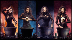 Beautiful female magician making witchcraft. Sexy witch in dungeon. Set collection. Halloween magic concept Stock Image