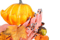Beautiful female nails with autumn theme Stock Photography