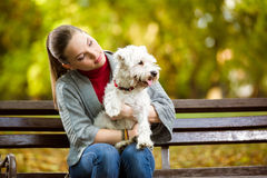 Beautiful female in park with her dog. Breed maltese Royalty Free Stock Photography