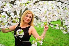 Beautiful female posing in the sakura garden Royalty Free Stock Photos