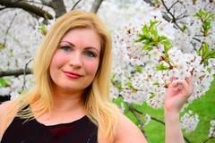 Beautiful female posing in the sakura garden Royalty Free Stock Images