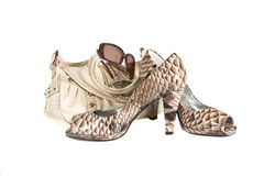 Beautiful female shoes from a leather with. A leather handbag on a white background stock photos