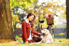 Beautiful female sitting on a green grass and looking at dog in Royalty Free Stock Image