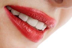 Beautiful female smiley lips Stock Image