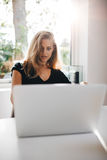 Beautiful female surfing the net on laptop Royalty Free Stock Photography