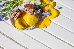 Beautiful feminine composition,bright colors. French macaroon sweets and tender flowers blossoms on white wooden royalty free stock image
