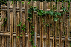 Beautiful fence. Of Chiang Mai, Thailand Royalty Free Stock Photos