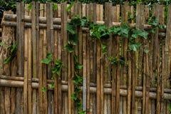 Beautiful fence Royalty Free Stock Photos