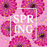 Beautiful festive background with flowers and confetti. Spring o Royalty Free Stock Images