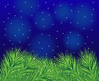 Beautiful festive background with spruce branches. Illustration Stock Image