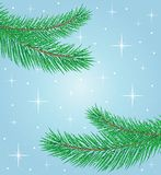 Beautiful festive background with spruce branches. Illustration Royalty Free Stock Images