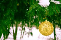 Beautiful festive elegant yellow, golden round balls, Christmas decorations for the new year, Christmas hanging on fir branches royalty free stock photos