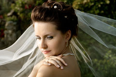 Beautiful fiancee Royalty Free Stock Photography