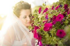 Beautiful fiancee royalty free stock image