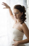 Beautiful fiancee. Vertical wedding portrait beautifull  fiancee in white dress, soft light Royalty Free Stock Photography